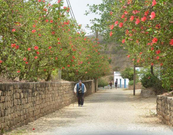 Strolling Along - Brava, Cape Verde 2013